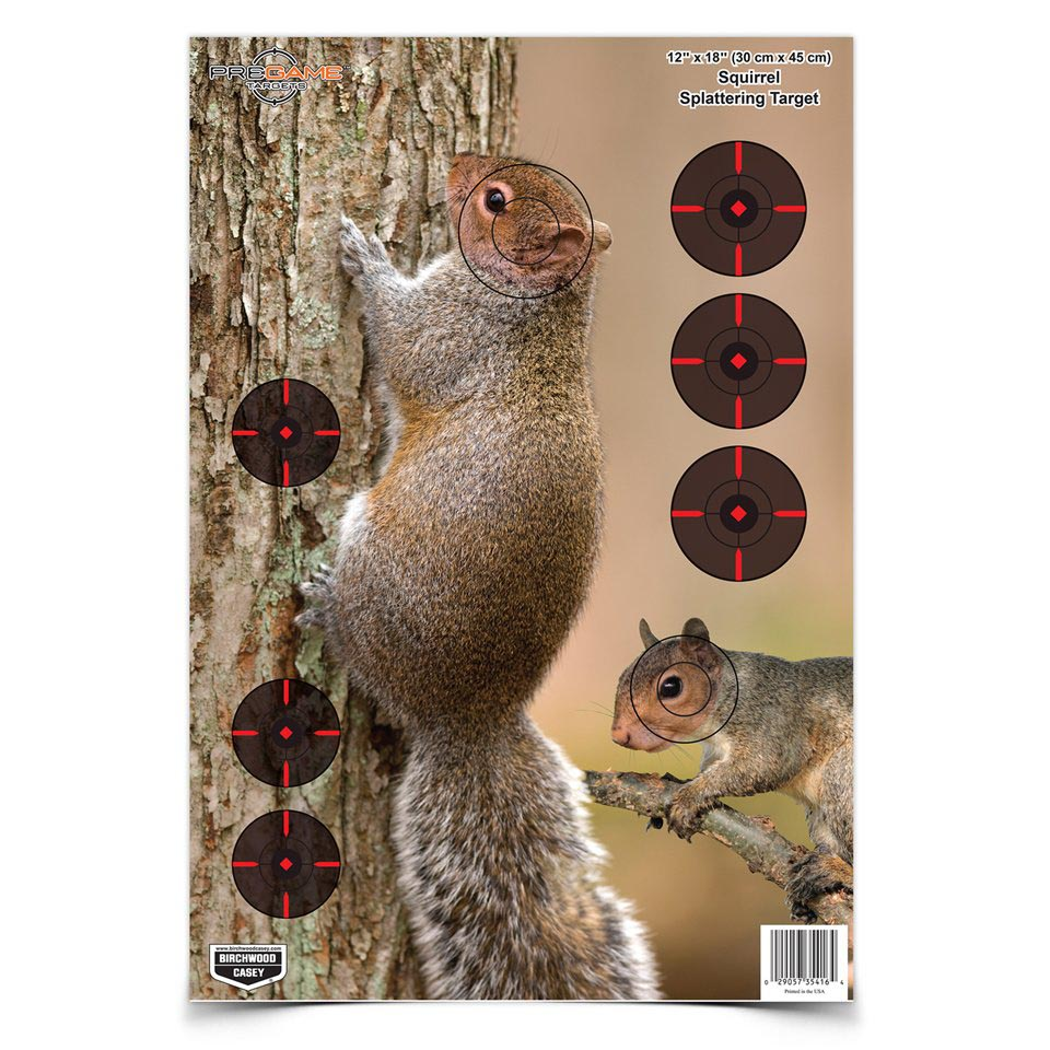 Birchwood Casey Pregame Squirrel Target Game Targets