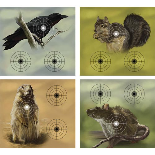 Crosman Varmint Targets, 20 ct