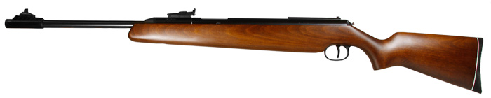 Diana Model 48