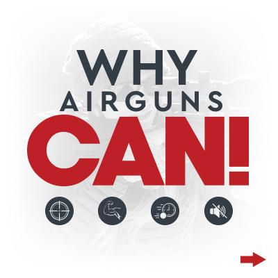 AirgunsCan Intro